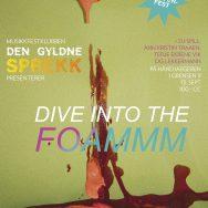DGS-Foammm
